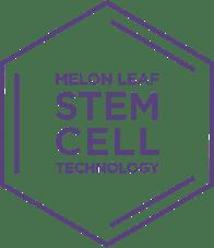 Melon Leaf Stem Cell Technology